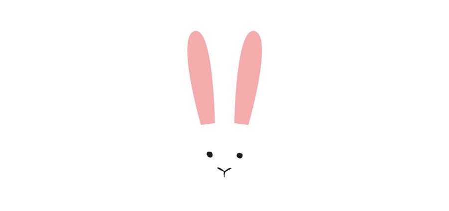 animals_illustration_rabbit